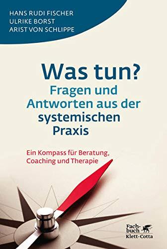 was-tun-fragen-und-antworten-aus-der-systemischen-praxis-ein-kompass-fur-beratung-coaching-und-therapie