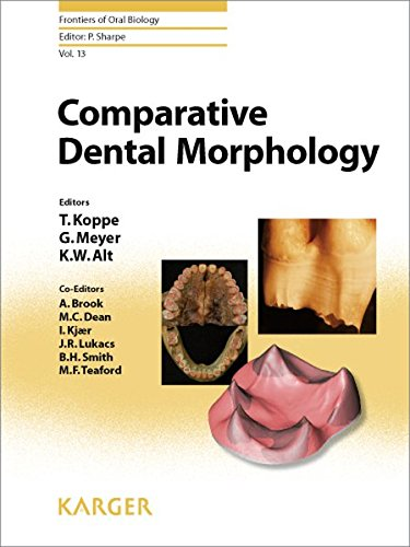comparative-dental-morphology-14th-international-symposium-on-dental-morphology-greifswald-august-2008-selected-papers-frontiers-of-oral-biology-vol-13