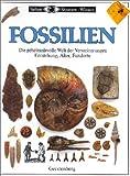 Taylor, Paul D.: Sehen, Staunen, Wissen: Fossilien.