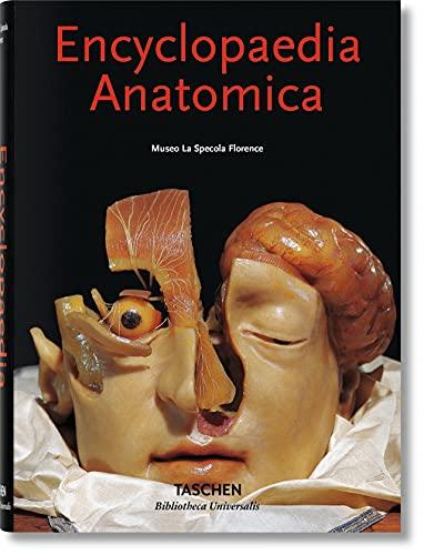 encyclopaedia-anatomica