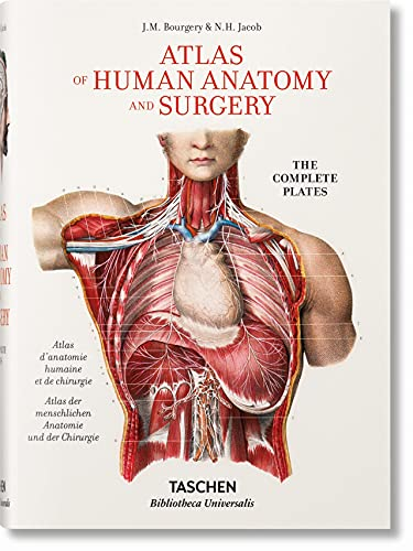bourgery-atlas-of-human-anatomy-and-surgery