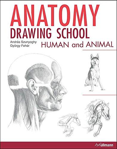 anatomy-drawing-school-human-and-animal