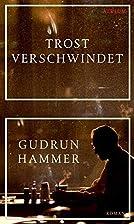 Trost verschwindet by Gudrun Hammer