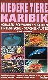 Paul Humann: Niedere Tiere Karibik. Buch der Zeitschrift Tauchen