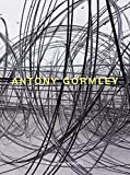 Damasio, Antonio: Antony Gormley