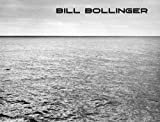 Meyer-Stoll, Christiane: Bill Bollinger