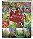 Herbst-Impressionen von Bäumen und…
