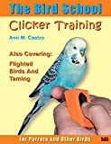 Ann Castro: The bird school: Clicker training for parrots and other birds