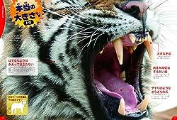 「本当の大きさ」で、動物が目の前にいるような迫力