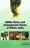 Sood, S.K.: Edible Roots and Underground Stems of Ethinic India