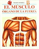 Parramon: El musculo/ The Muscle (Coleccion) (Spanish Edition)
