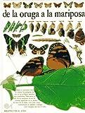 Whalley, Paul: De LA Oruga a LA Mariposa (Eyewitness Series in Spanish) (Spanish Edition)