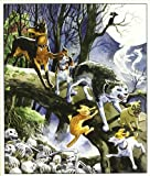 Dorkin, Evan: Los animales de Burden Hill / The animals of Burden Hill: Ritos Peludos / Furry Rites (Spanish Edition)