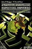 Briggs, John P.: A Traves del Maravilloso Espejo del Universo (Spanish Edition)