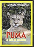Miles, Hugh: Puma [Videograbaci&oacute;n]: El Le&oacute;n de Los Andes