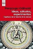 PIERGIORGIO ODIFREDDI: IDEAS, CALCULO, EXPERIMENTOS: CAPITULOS