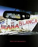 Saborit, Antonio: Pablo Ortiz Monasterio: White Mountain