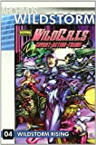 Robinson, James: Archivos Wildstorm 4 Wildcats/ Wildstorm Archives (Spanish Edition)