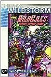 Robinson, James: Archivos Wildstorm 4 Wildcats/ Wildstorm Archives (Spanish Edition)