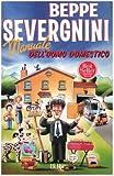 Severgnini, Beppe: Manuale Dell'Uomo Domestico (Italian Edition)