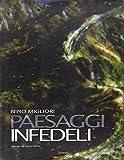 Nino Migliori: Paesaggi infedeli