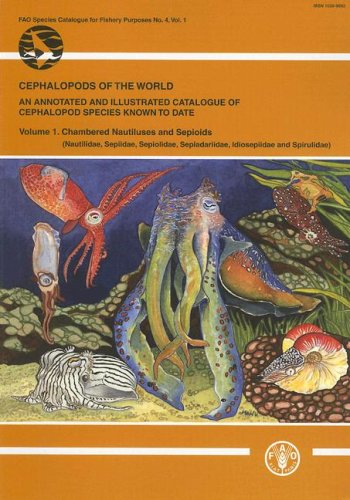cephalopods-of-the-world-an-annotated-and-illustraded-catalogue-of-cephalopod-species-known-to-date-fao-species-catalogue-for-fisheries-purposes
