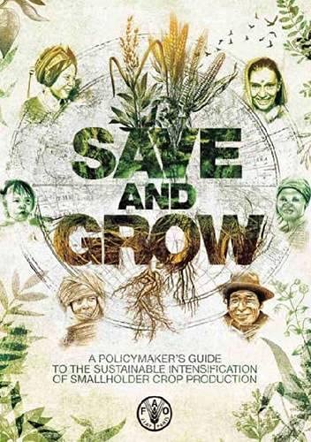 save-and-grow-a-policymakers-guide-to-sustainable-intensification-of-smallholder-crop-prod