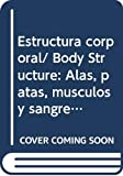 Green, Tamara: Estructura corporal/ Body Structure: Alas, patas, musculos y sangre/ Wings, Legs, Muscles and Blood (Los Insectos Bajo El Microscopio/ Insects Under the Microscope) (Spanish Edition)