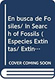 Green, Tamara: En busca de Fosiles/ In Search of Fossils (Especies Extintas/ Extinct Species) (Spanish Edition)