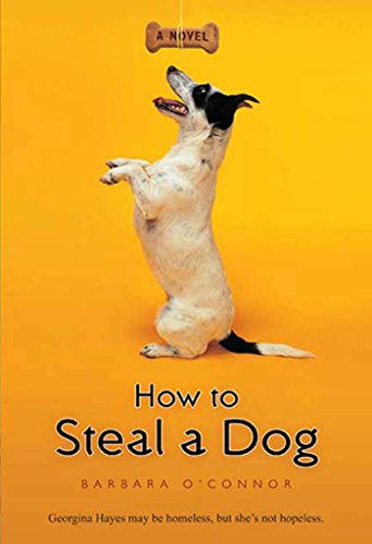how-to-steal-a-dog-a-novel