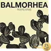 Rivers Arms (Dig): Balmorhea