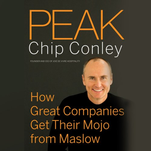 peak-how-great-companies-get-their-mojo-from-maslow