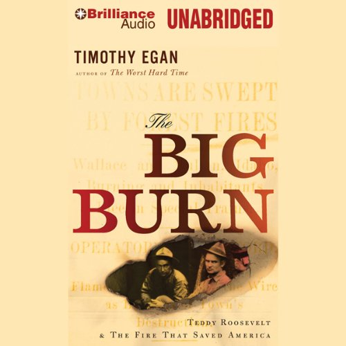the-big-burn-teddy-roosevelt-and-the-fire-that-saved-america