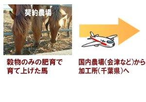天馬の商品について