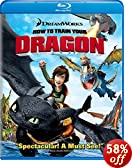 How to Train Your Dragon (Single Disc Edition) [Blu-ray]