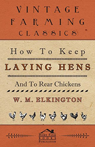 how-to-keep-laying-hens-and-to-rear-chickens