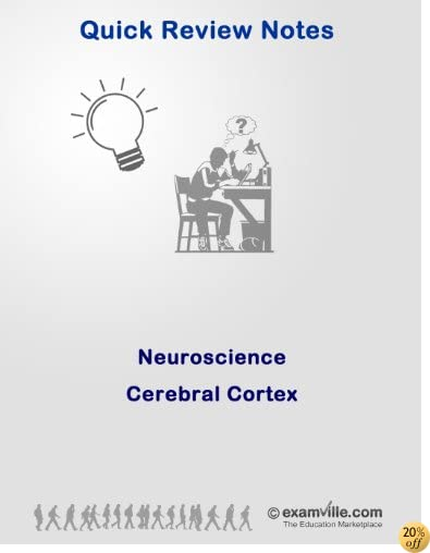 Neuroscience Review: The Cerebral Cortex (Quick Review Notes)
