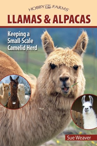 llamas-and-alpacas-small-scale-herding-for-pleasure-and-profit