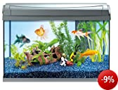 Tetra 199347 AquaArt Goldfish Aquarium-Komplett-Set 60 L, modernes Design in Verbindung mit innovativer Technik und einfacher Pflege, anthrazit