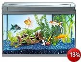 Tetra 199347 AquaArt Goldfish Aquarium-Komplett-Set 60 L, modernes Design in Verbindung mit innovativer Technik und einfacher Pflege, anthrazit