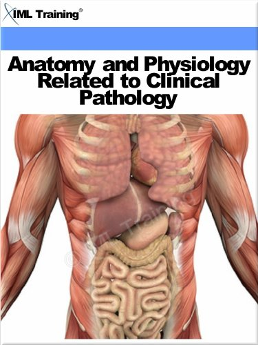 anatomy-and-physiology-related-to-clinical-pathology-human-body