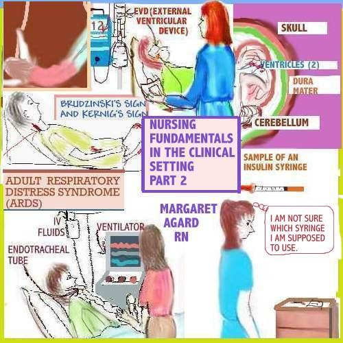 nursing-fundamentals-in-the-clinical-setting-part-2