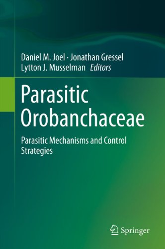 parasitic-orobanchaceae-parasitic-mechanisms-and-control-strategies
