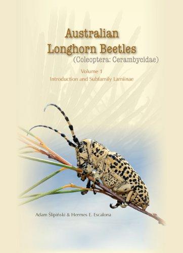 australian-longhorn-beetles-coleoptera-cerambycidae-volume-1-introduction-and-subfamily-lamiinae