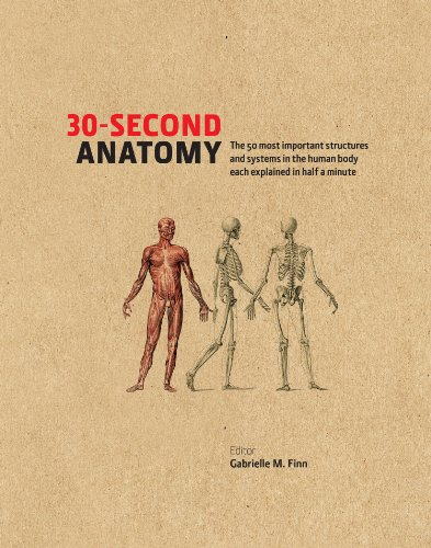 30-second-anatomy-the-50-most-important-structures-and-systems-in-the-human-body-each-explained-in-under-half-a-minute-30-second