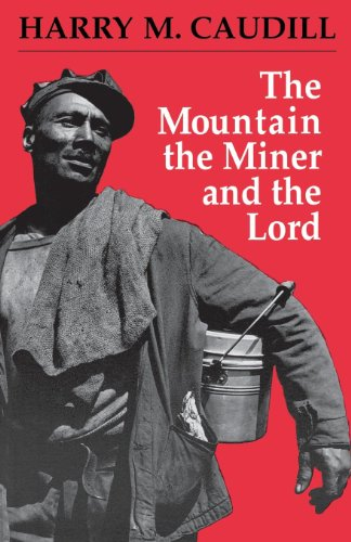 the-mountain-the-miner-and-the-lord-and-other-tales-from-a-country-law-office