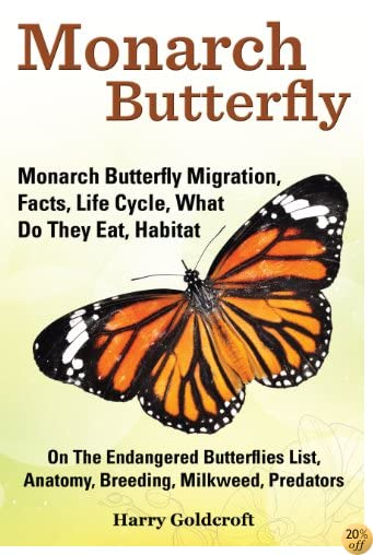 Monarch Butterfly: Monarch Butterfly Migration, Facts, Life Cycle, What Do They Eat, Habitat, On The Endangered Butterflies List, Anatomy, Breeding, Milkweed, Predators