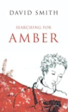 Searching For Amber by David Smith