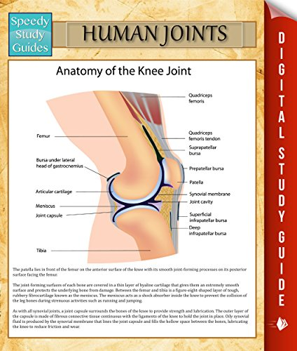 human-joints-speedy-study-guides