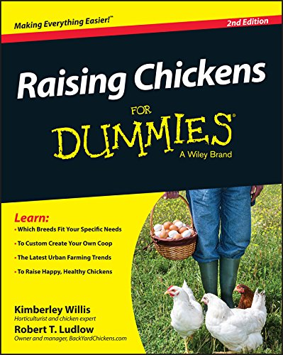 raising-chickens-for-dummies